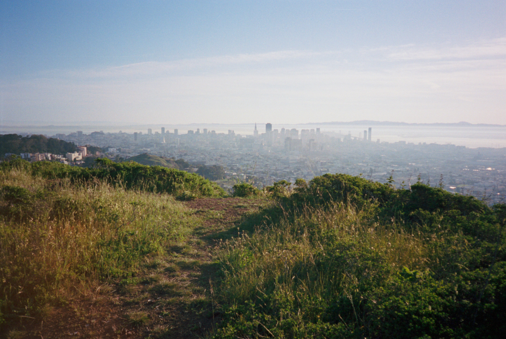 Day x: Morning on Twin Peaks