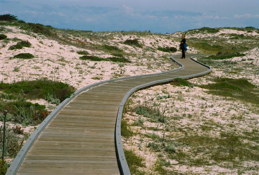 Day 140: Dune Walk